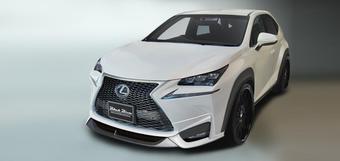 Обвес WALD для Lexus NX